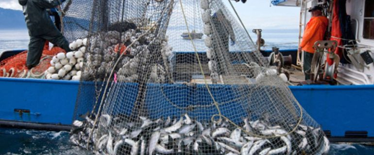 Preparing for the commercial fishing season in alaska for What is commercial fishing